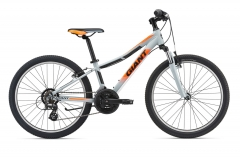 BikeBase Giant XTC JR 1 24